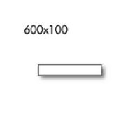 600x100