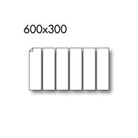 600x300